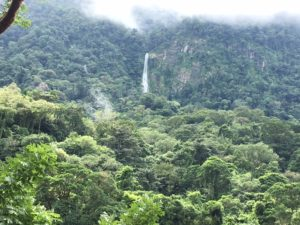 why pico bonito is my favorite national park in honduras